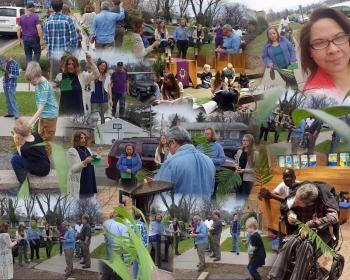 Palm Sunday collage